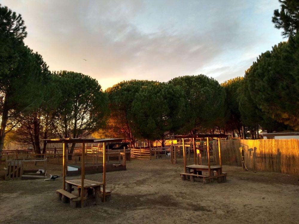 Aire camping-car à Aigues-Mortes (30220) - Photo 2